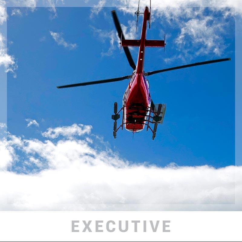executive-royalaventures